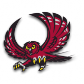 Temple Owls Merchandise